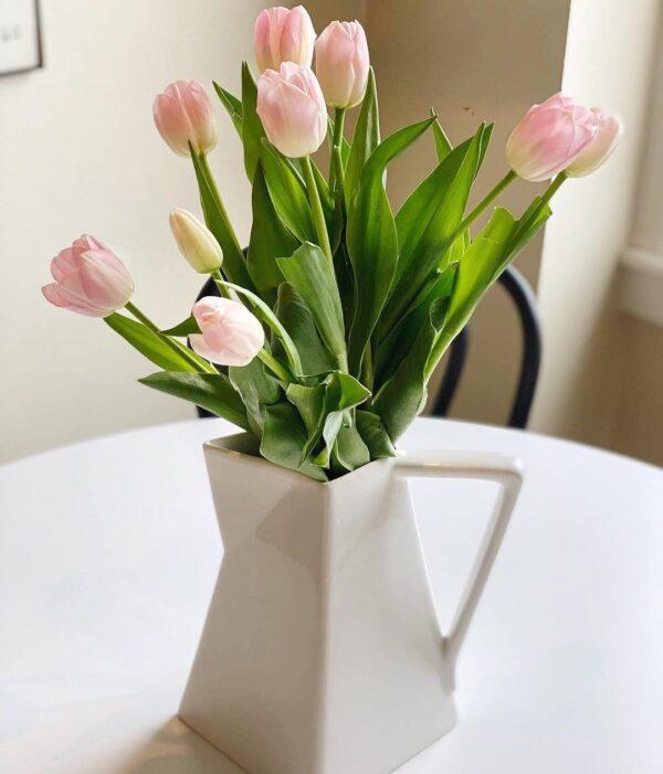 brocca bianca tulipani